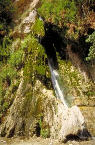 David's Waterfall, En Gedi (wwwlgoisrael.com)