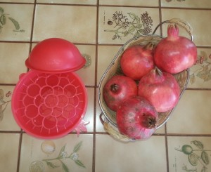 Pomegranate and seed extractor Miriam