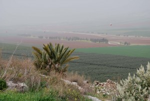 The Jezreel Valley floor, not far from the likely site of Naboth's vineyard as seen on a hazy spring day from from Tel Jezreel. Photo: Miriam Feinberg Vamosh